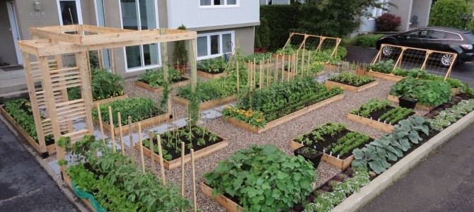 More Garden – Less Lawn Equals Less Pollution